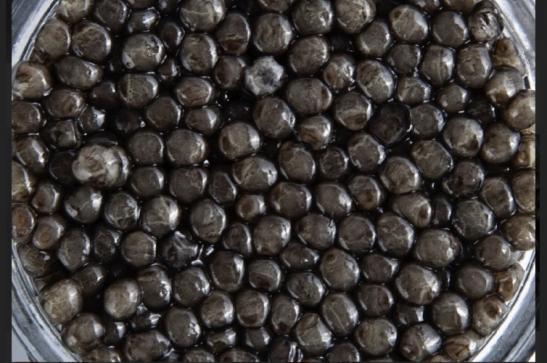 Черная Икра Белуги  (250гр)